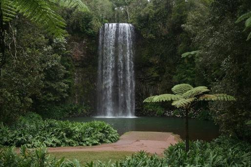 Milla Milla Falls, a must see.